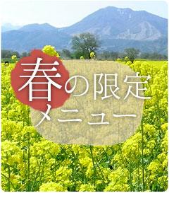 spring_m.jpg